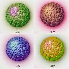 helminth infection rates hpv causes cervical lesions