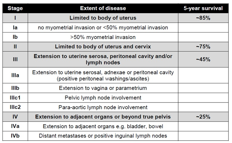 cancer endometrial staging
