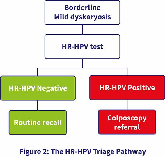 hpv high risk nhs)