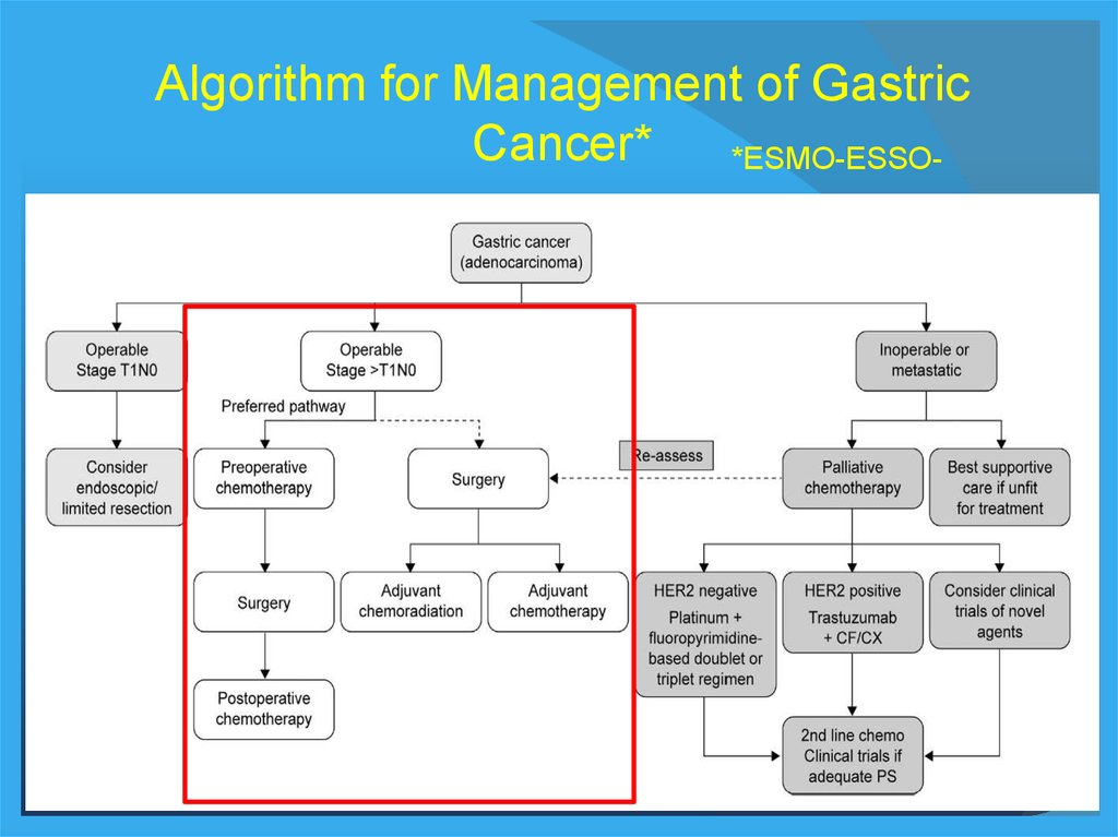 gastric cancer treatment algorithm)