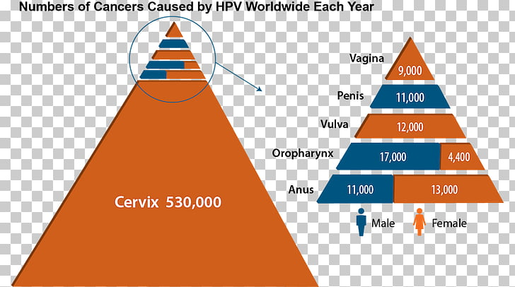hpv vaccine and head and neck cancer