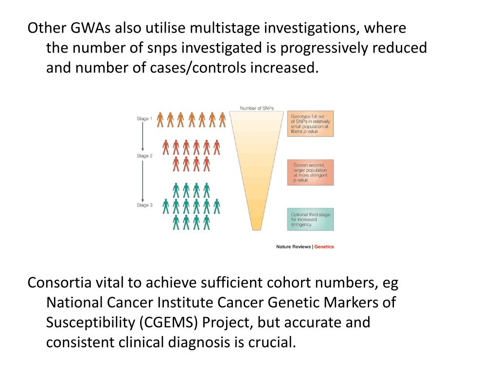 cancer genetic markers of susceptibility papilloma virus operazione laser