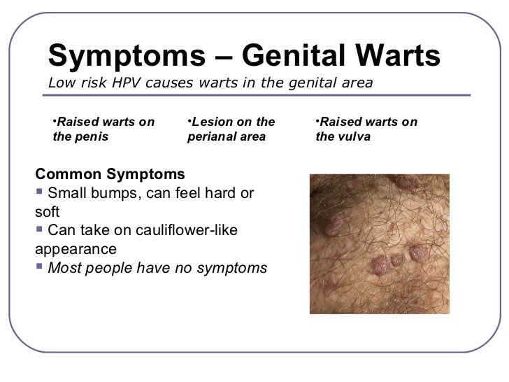 hpv type that causes genital warts)