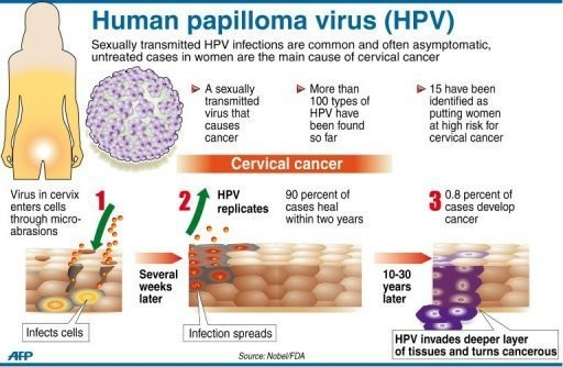 hpv and cure)