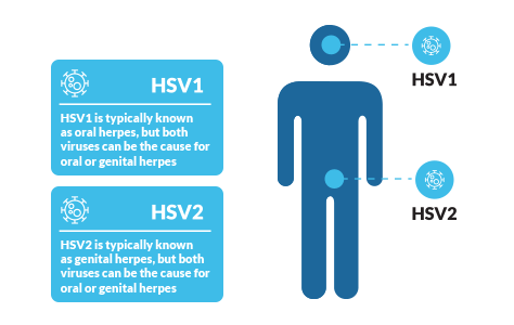 hpv or herpes worse)