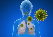 vierme virus hpv cancer for males