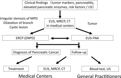 cancer pancreas diagnostic