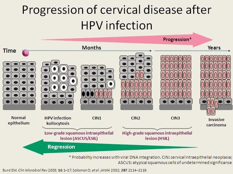 hpv causes cervical lesions