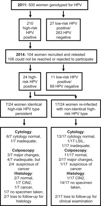 hpv high risk types