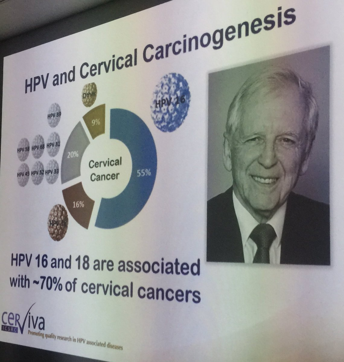 when was the link between hpv and cervical cancer discovered)