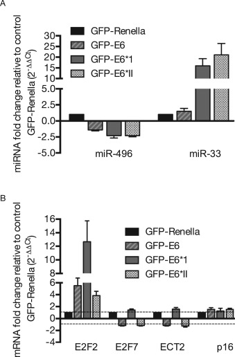 human papillomavirus 16 e6 modulates the expression of mir-496 in oropharyngeal cancer