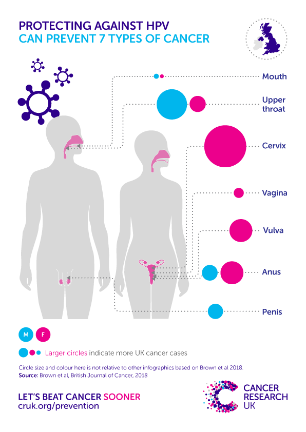 cancer hpv males)