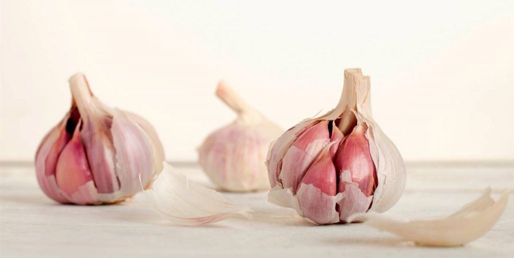 dysbiosis garlic