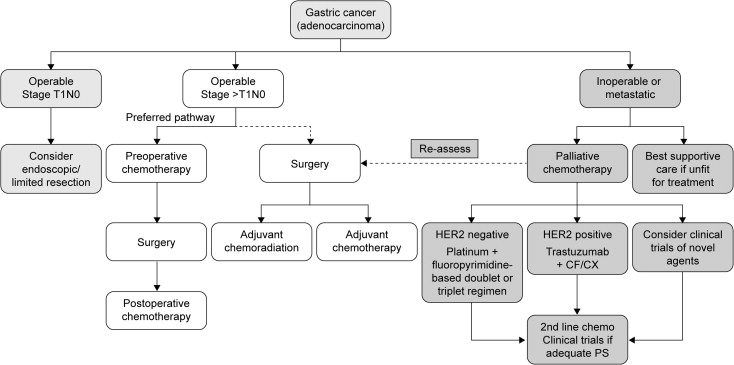 gastric cancer unmet needs)