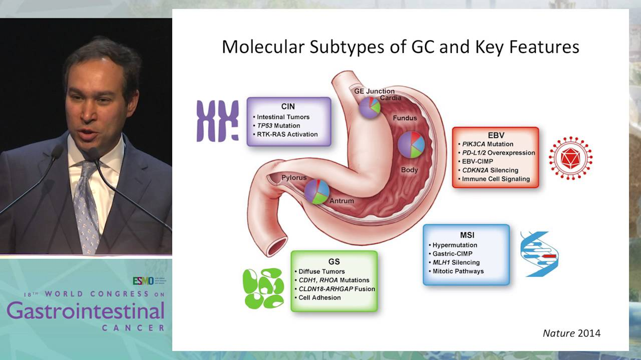Medical Semiology | Esophagus | Gastrointestinal Tract
