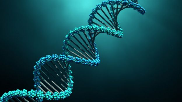 ovarian cancer genetic home)