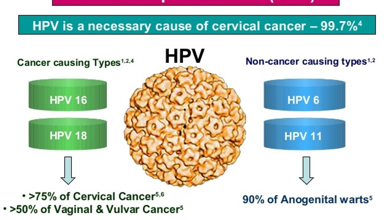 cervical cancer by hpv)