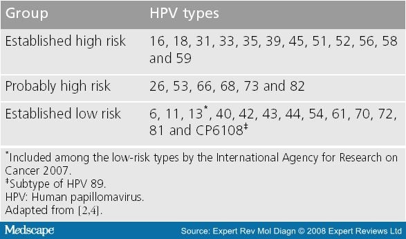 hpv high low risk)