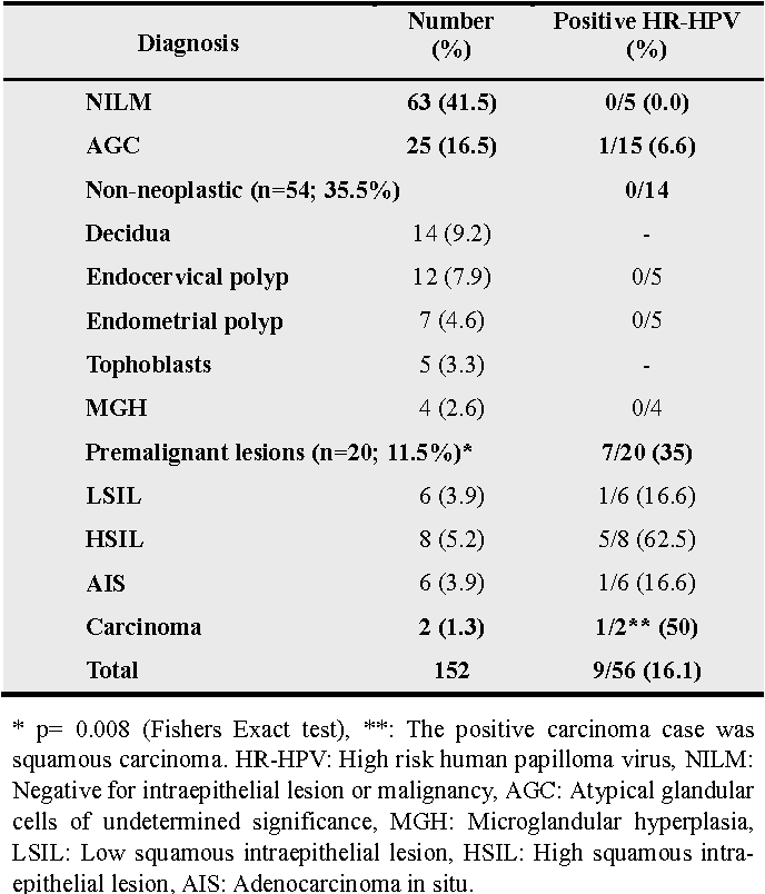 (English) The role of human papillomavirus infection in prostate cancer   Cabinet ginecologie