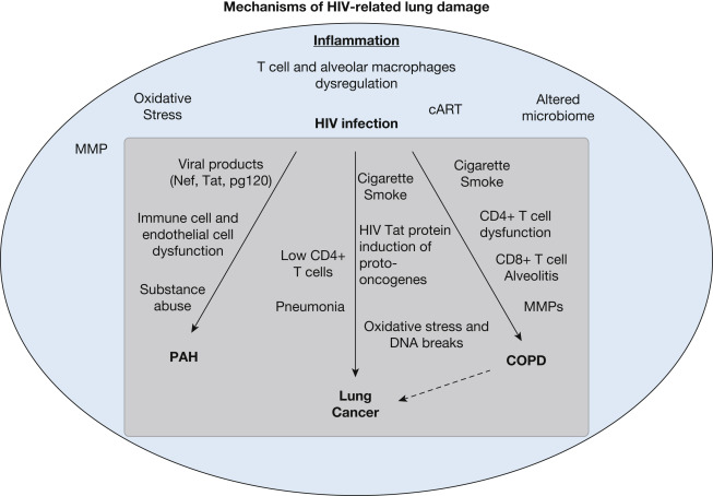 hiv and lung cancer)