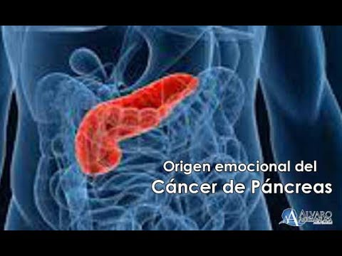biodescodificacion cancer de pancreas