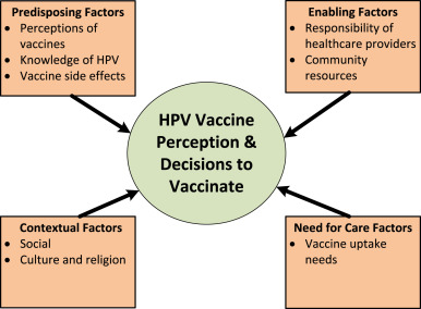 hpv vaccine cons
