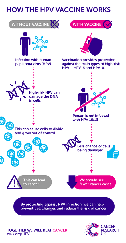 hpv and ovarian cancer risk