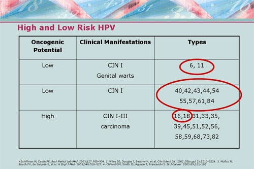 hpv high low risk