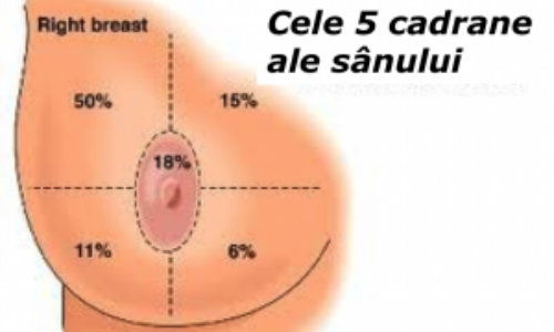 endocrine cancer prevention cancerul vezica urinara simptome