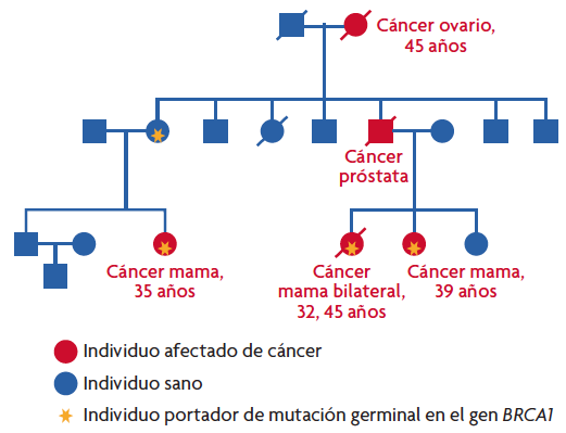 hpv gardasil commercial atypical ductal papilloma