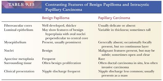 difference between papilloma and carcinoma)