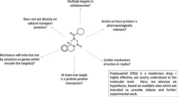 anthelmintic drugs mechanism of action)