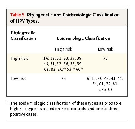 hpv high risk type)