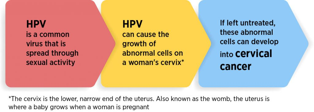 hpv causes of cervical cancer)